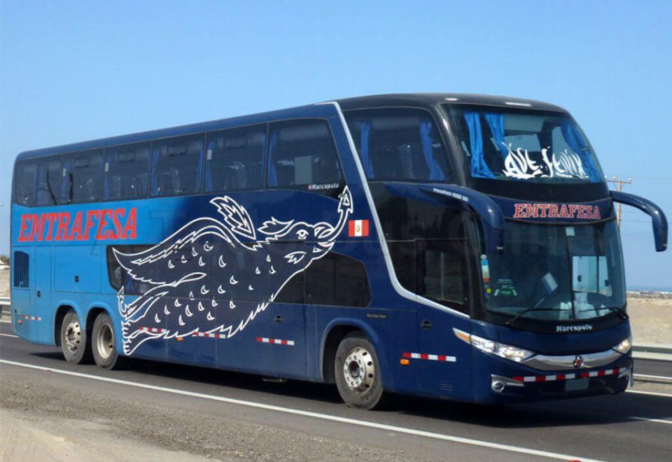 Emtrafesa buses